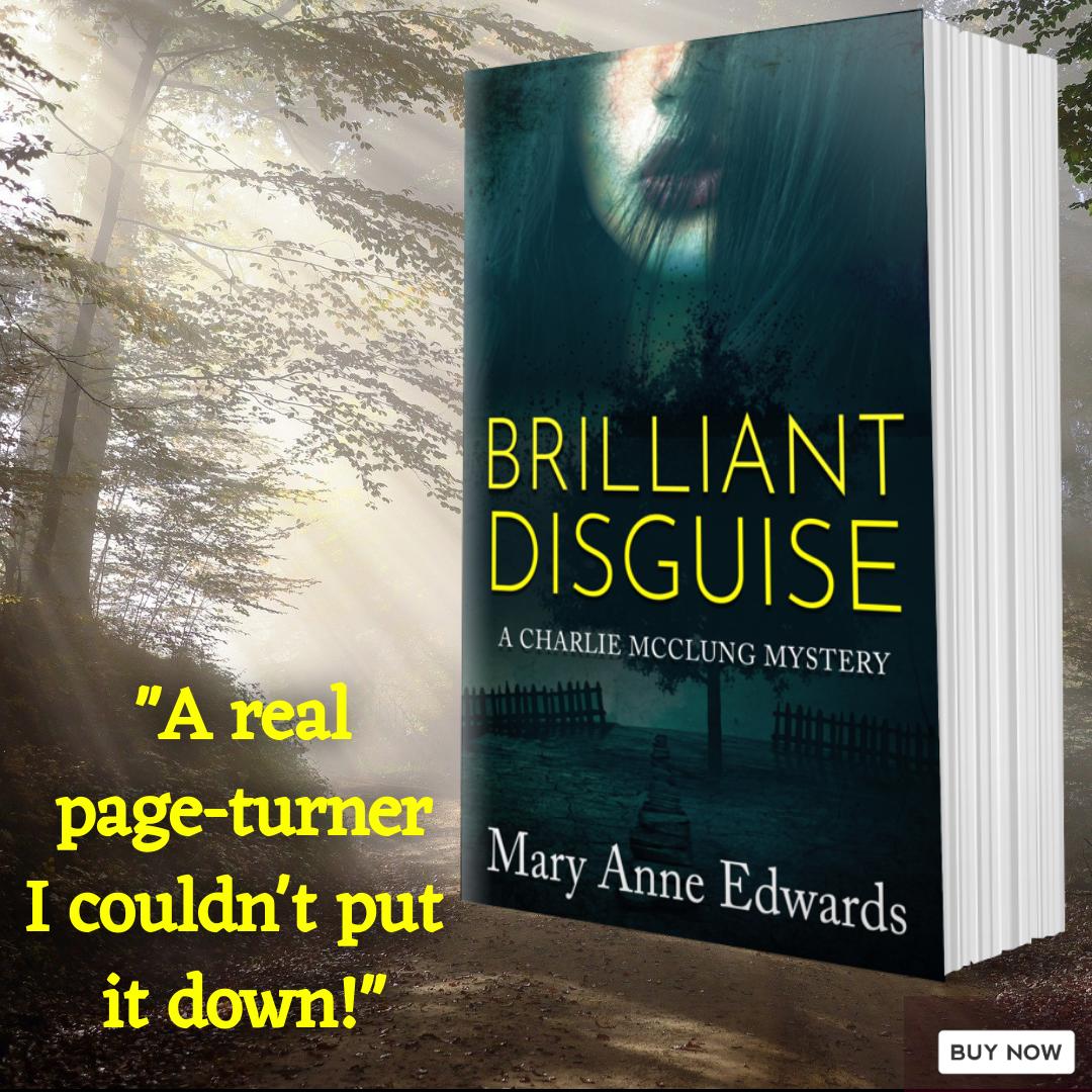 BrilliantDisguise Mary Anne Edwards